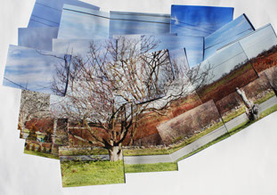 By: Geilyn Akucewich - Photo Collage, Fall 2011- Allison Bianco