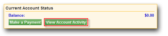image of View Account Activity button
