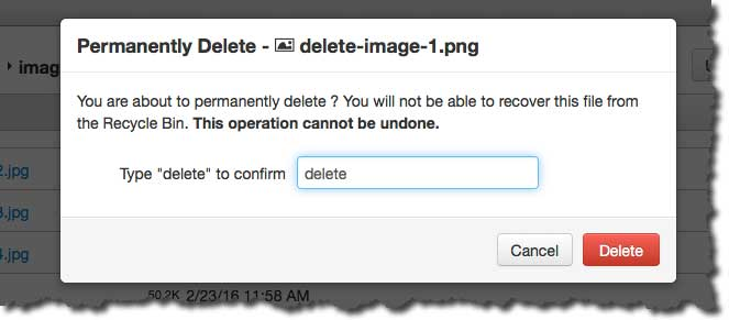 confirm your delete